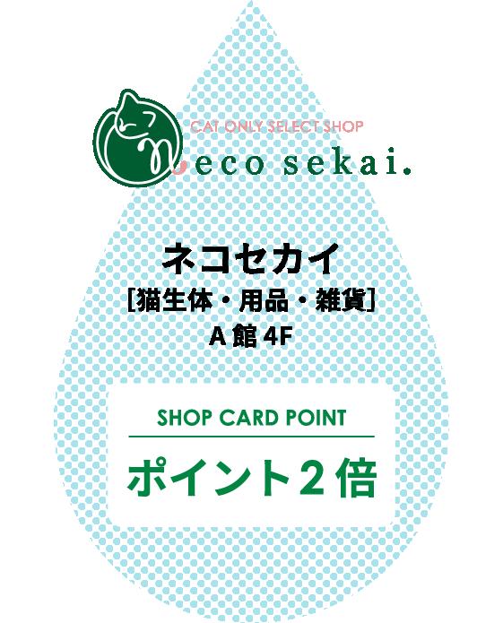ネコセカイ[猫生体・用品・雑貨]A館4F ポイント2倍